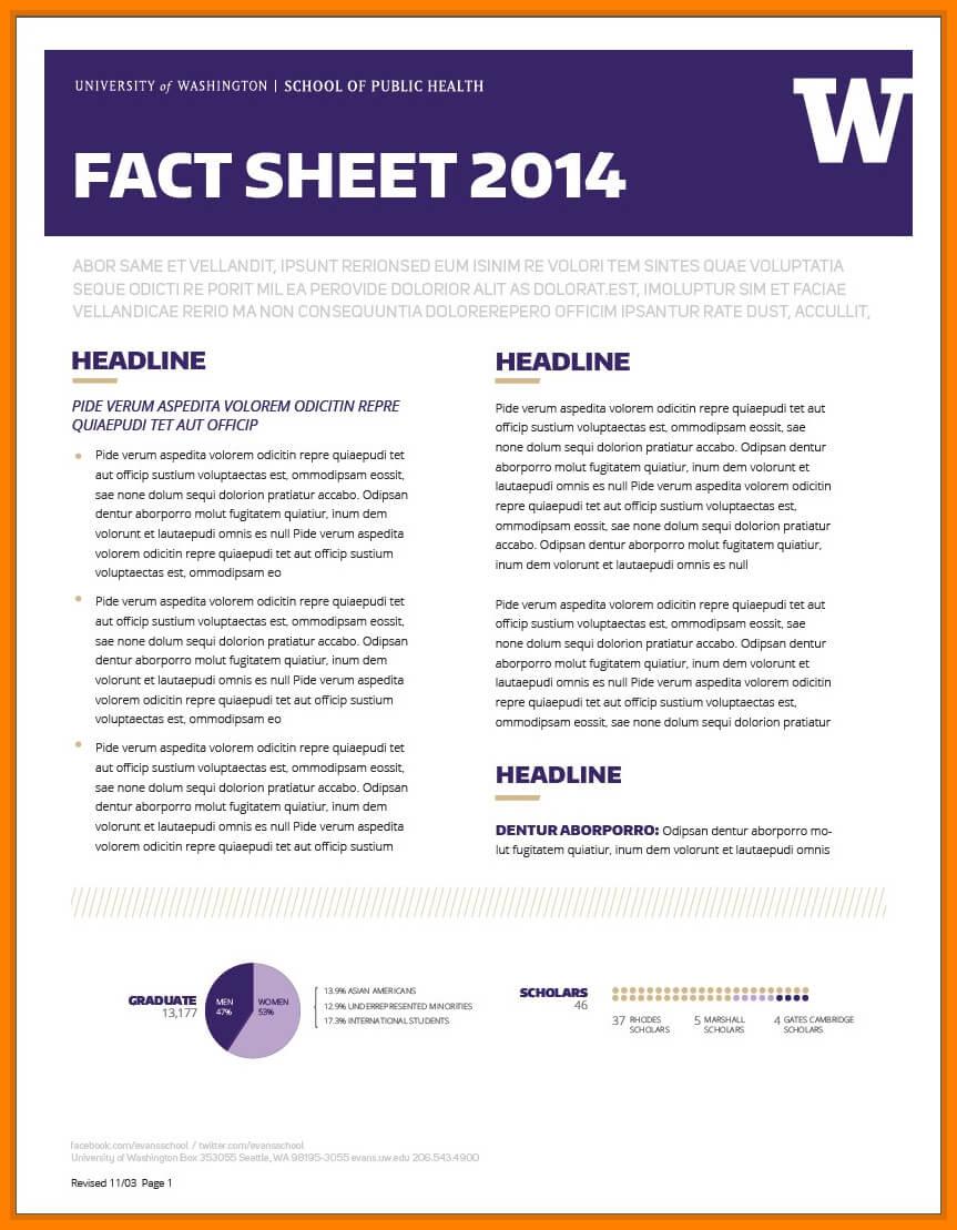 009 Template Ideas Download Fact Sheet Microsoft Worde For Fact Sheet Template Microsoft Word