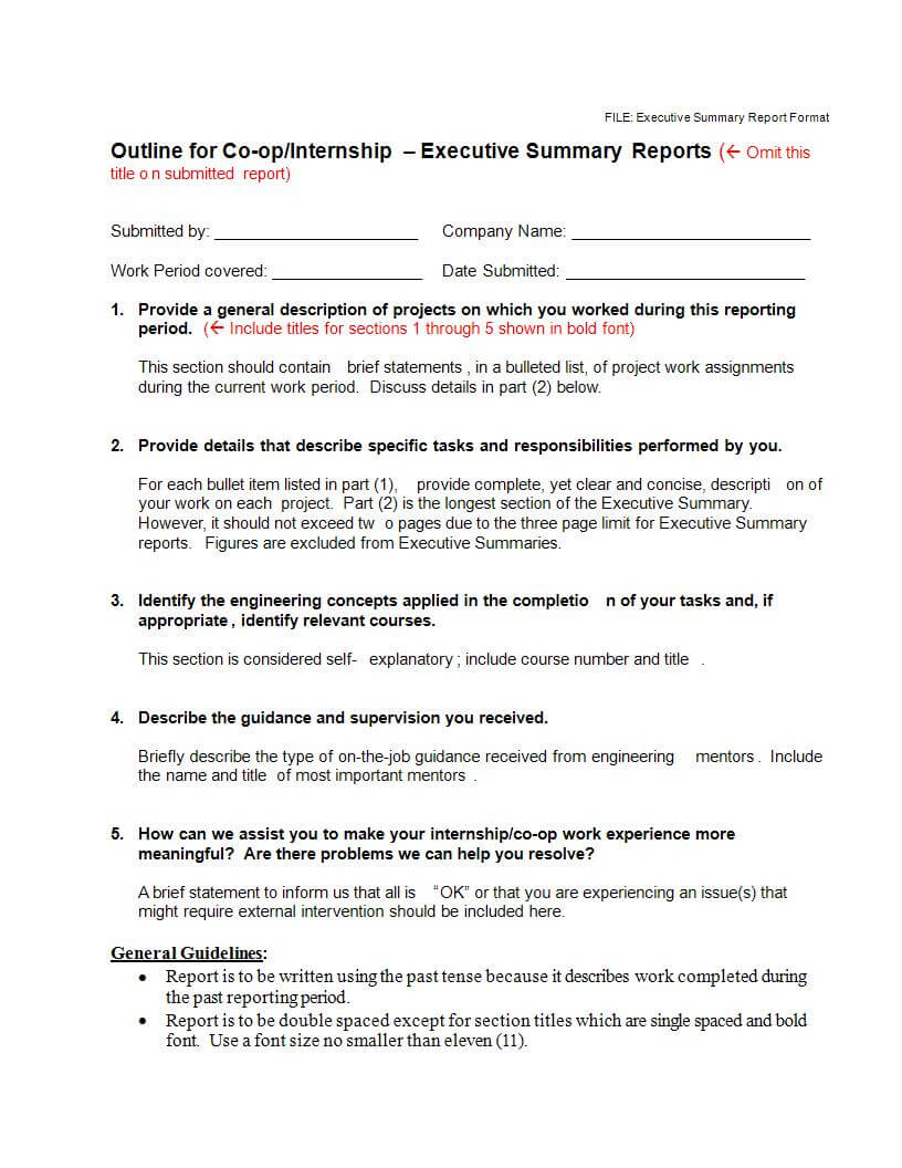 22+ Executive Summary Samples – Pdf, Doc   Examples Within Executive Summary Report Template