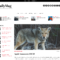 Best Aggregator Themes For WordPress – Wp Mayor Regarding Drudge Report Template