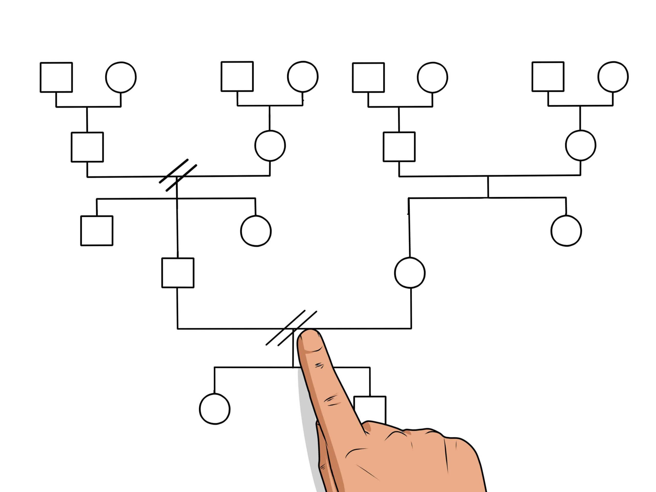 Create A Genogram Online – Colona.rsd7 In Genogram Template For Word
