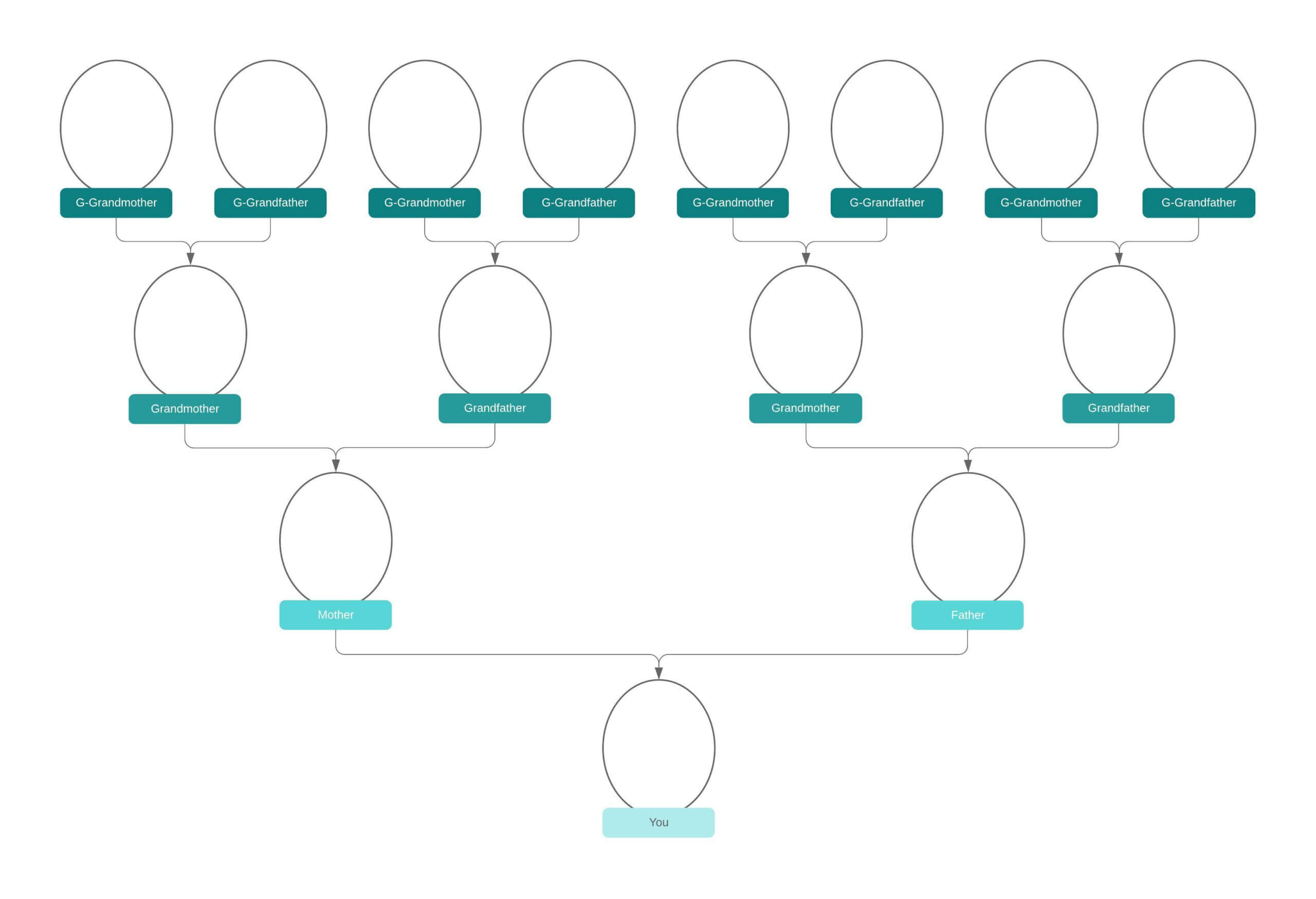 Family Tree Generator   Lucidchart Throughout Blank Tree Diagram Template