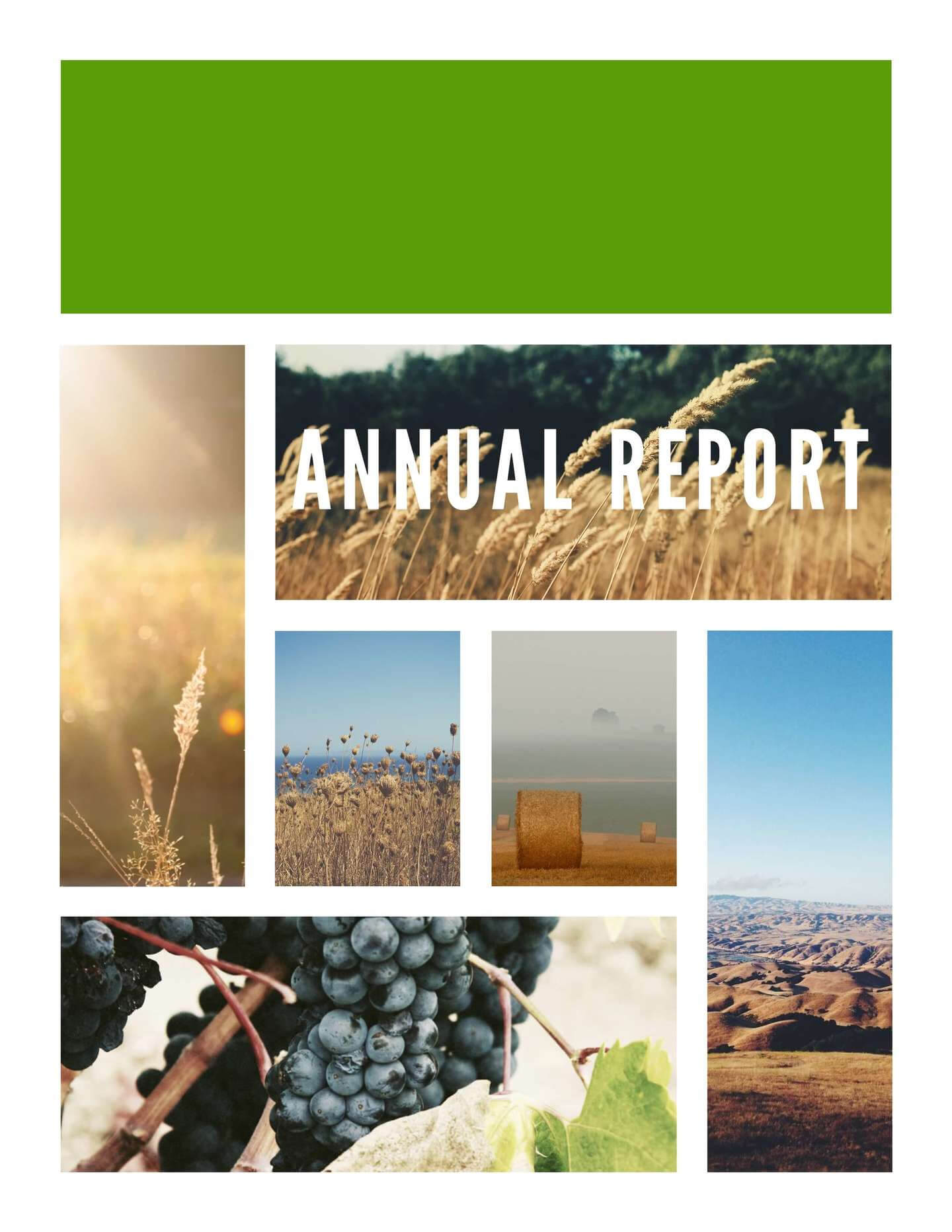 Free Annual Report Templates & Examples [6 Free Templates] Pertaining To Non Profit Annual Report Template