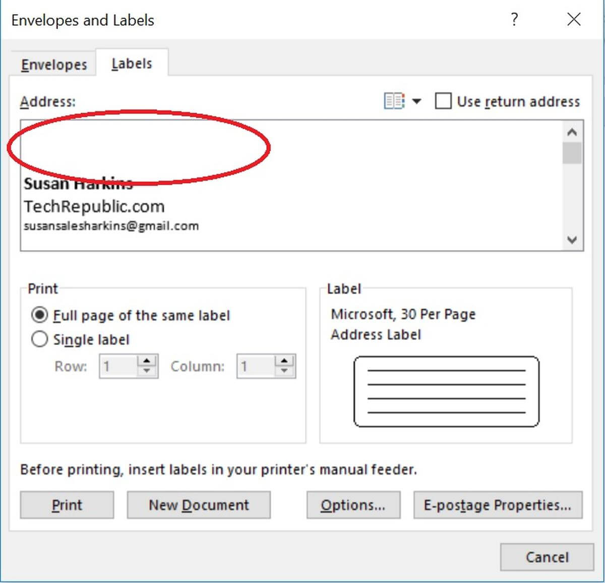 How To Insert Graphics Into Word Label Documents – Techrepublic With Regard To Name Tag Template Word 2010