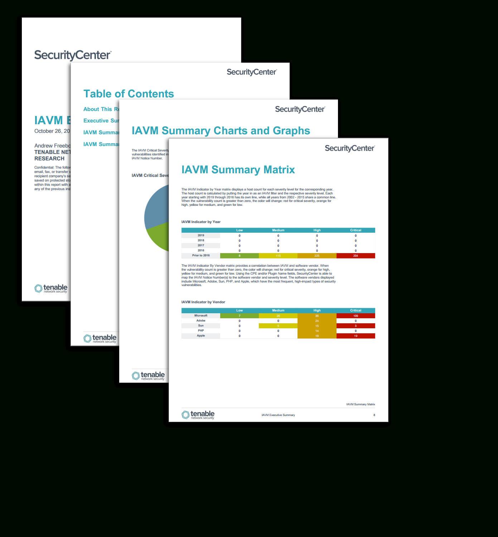 Iavm Executive Summary Report – Sc Report Template | Tenable® With Executive Summary Report Template