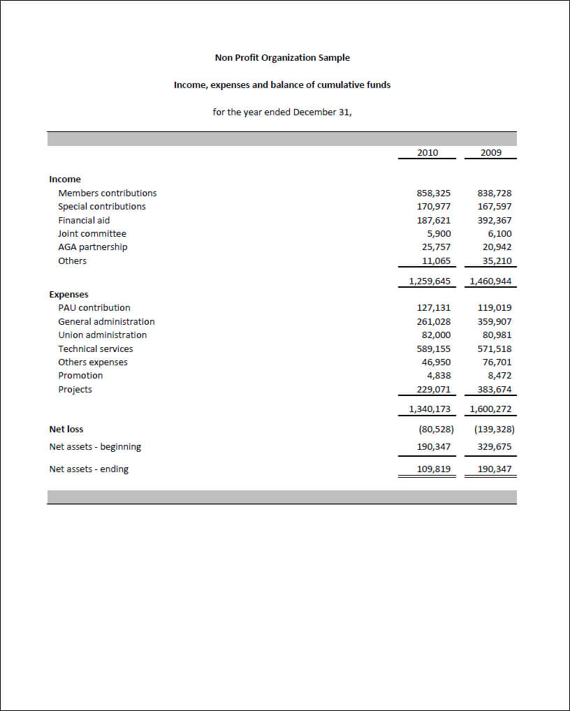 Sample Of Financial Report For Non Profit Organization In Non Profit Monthly Financial Report Template